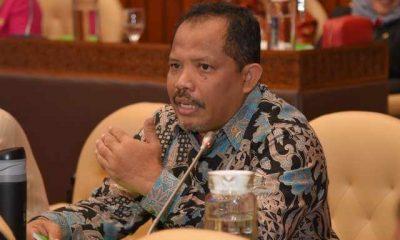 Johan, Pemotongan Anggaran KLHK,Bukti Pemerintah Tidak Peka dengan Banyaknya Bencana Akibat Kerusakan Hutan