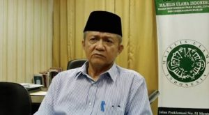 Soal Status Imam Besar Habib Rizieq, MUI: Itu yang di FPI