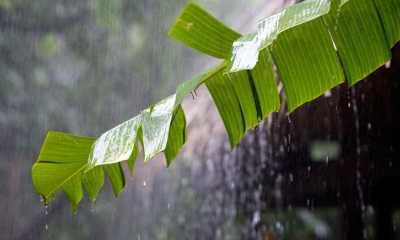 BMKG: Waspada Hujan Lebat Disertai Angin Kencang di 8 Wilayah Ini