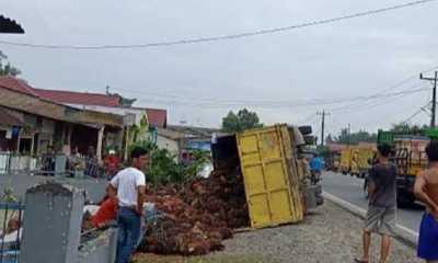 Sopir Mengemudi Sambil Bermesraan, Truk Pengangkut Sawit Dari Tanjungbalai Terbalik di Jalinsum