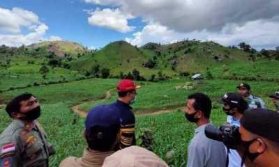 Pasca Banjir, Penanganan Hutan Gundul di NTB Harus Berorientasi Kesra