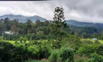 Alue Dohong : Masyarakat Harus Jaga Konservasi Alam