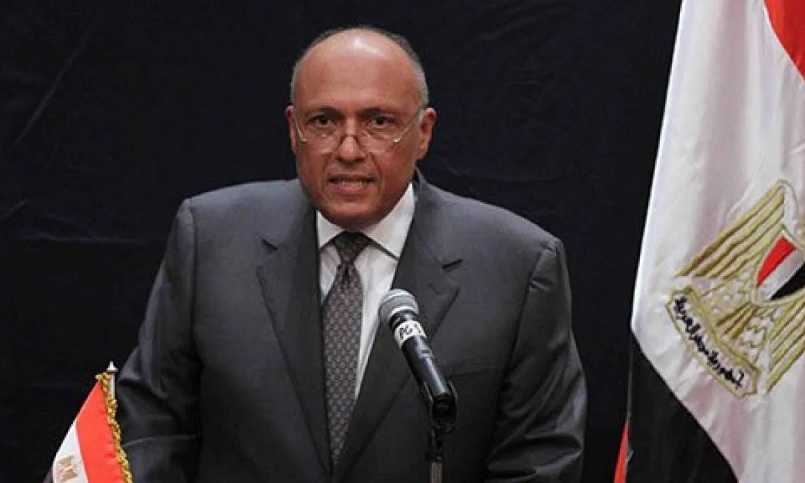 Menlu Mesir Memuji Langkah Turki Bangun Diplomatik Dengan Kairo