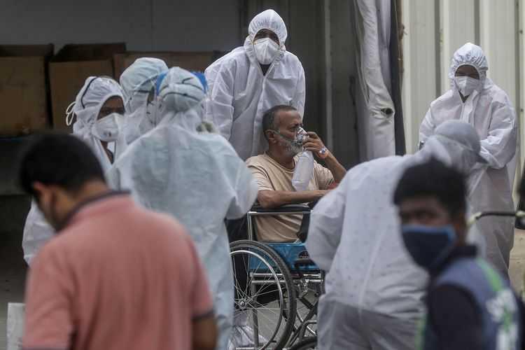 Dokter India: Tak Ada Bukti Ilmiah Kotoran Sapi Obat COVID-19