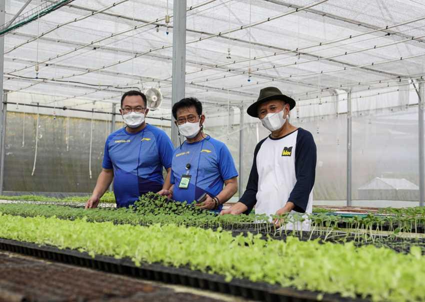 Bentuk Korporasi Petani, Menkop Fokus Kembangkan Model Bisnis Sektor Pertanian