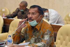 DPR Apresiasi Capaian Kementan di Triwulan Pertama 2021
