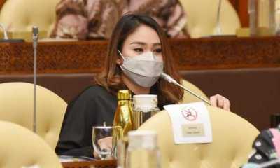 DPR Apresiasi KKP yang Resmi Larang Ekspor Benih Lobster