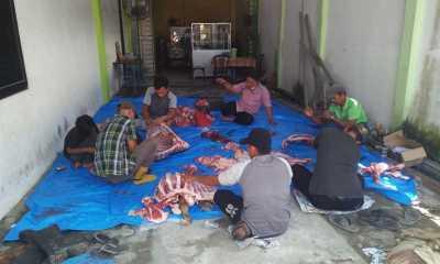 Meriahkan Idul Adha 1442 H, Dinas Pendidikan Kota Tanjungbalai Sembelih 3 Ekor Hewan Qurban