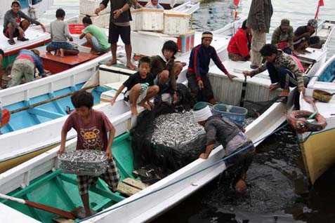 Saat PPKM Darurat, Perekonomian di Pelabuhan Perikanan Mulai Menggeliat Membaik