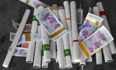 Kenaikan Cukai Rokok Malah Bakal Buat Petani Tembakau Jadi Korban
