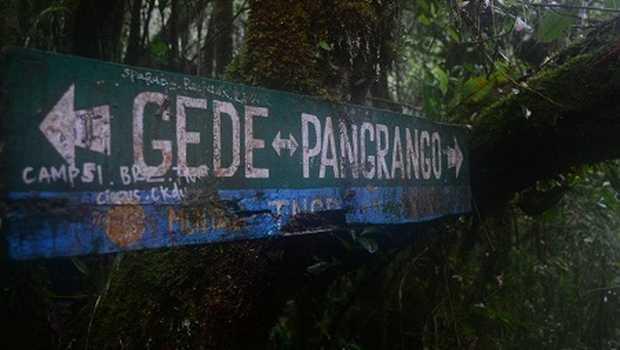 Cianjur Naik Level PPKM, Pendakian TNGGP Kembali Ditutup