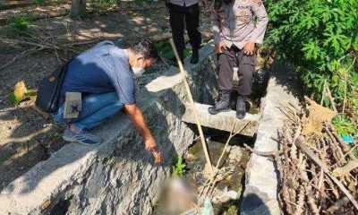 Pemkot Usulkan Keberadaan Habitat Buaya di Gang Romoyo Singkawang Jadi Obyek Wisata