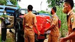 Pelaku UMKM di Jambi Dapat Bantuan Fasilitas untuk Mengemas Nanas